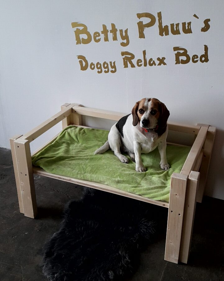 Betty Phuu`s Doggy Relax Bed - Classic High