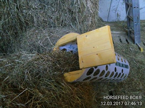 HORSEFEED BOX® The Rolling Dinner - Modell 40 SHORT