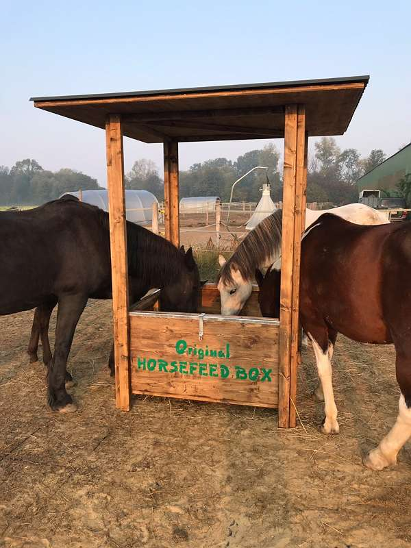 HORSEFEED BOX® CLASSIC FODDER & ROOF - BIG