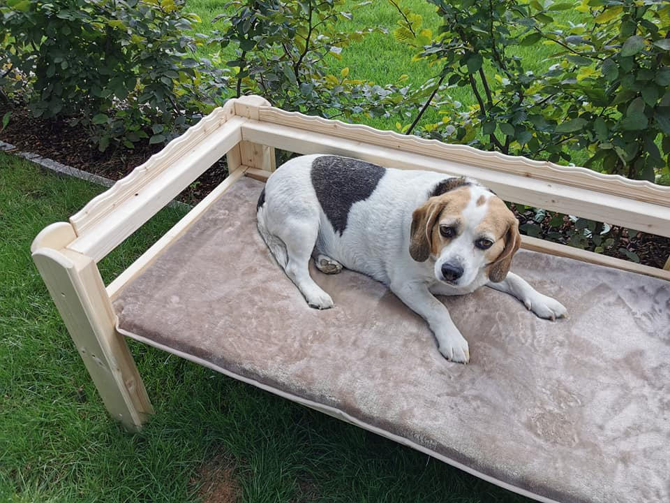 Betty Phuu`s Doggy Relax Bed - DeLuxe High